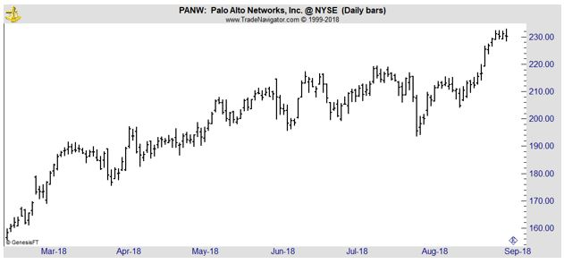 PANW daily chart
